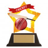 Mini Star Acrylic Cricket Series Trophy 10CM (100MM) - AC19643A